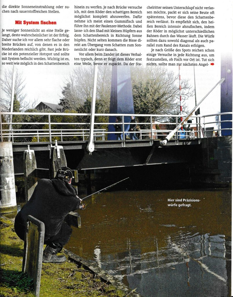 Brückentage - Der Raubfisch Seite 2