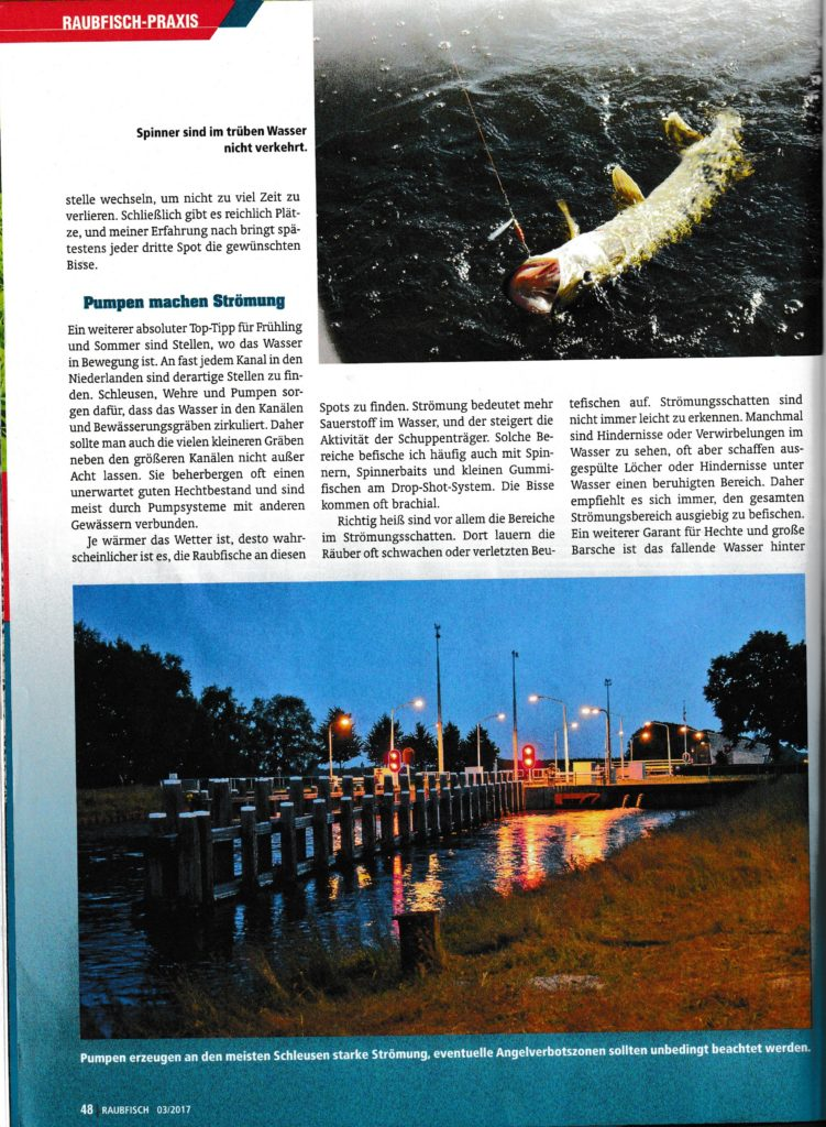 Brückentage - Der Raubfisch Seite 3