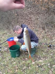 Fisch ist Fisch. Aber die Größe lässt zu wünschen übrig