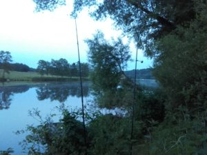 Die rechte Rute wurde um den Baum herumgelenkt, um einen guten Spot befischen zu können.