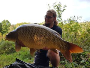 Karpfen über 30 Pfund fangen - das ist in fast allen Gewässern mit dem richtigen Riecher (oder Rüssel) möglich!