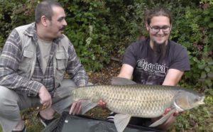 Tagelang mit den selben zwei Maiskörnern als Hakenköder angeln - da lacht der Schwabe!
